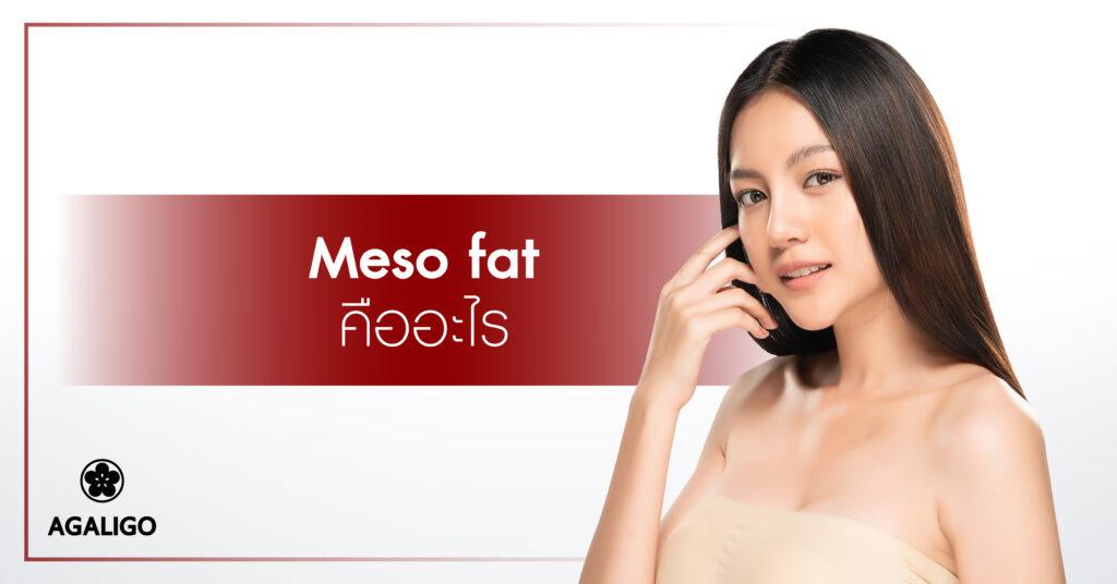 Meso fat คืออะไร?